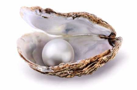 Gospel Reflection: the Parable of the Pearl of Great Price